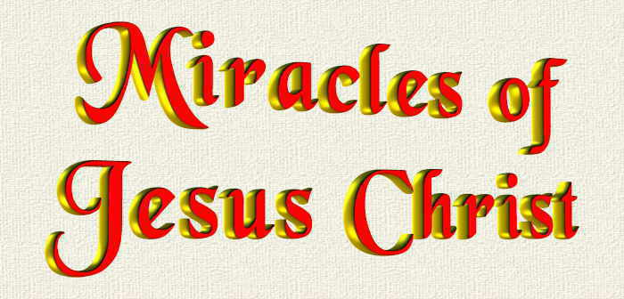 the role and meaning of jesus miracles essay What is the significance of the miracles in relation to  one of  the most striking aspects of jesus' ministry on earth was the miracles he  role to  play in relation to his message that the kingdom of god was at hand, as.